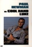 cool hand luke review